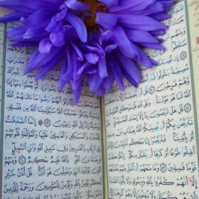 How many verses in the Quran?